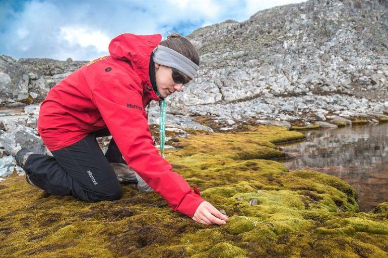 La participación femenina en la ciencia antártica nacional
