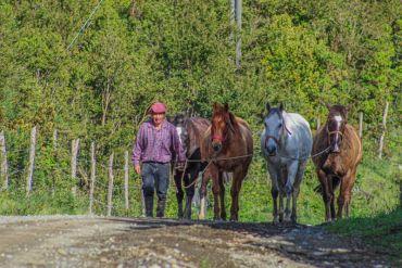 Se lanza proyecto que busca reducir las brechas rurales a través del permiso de circulación