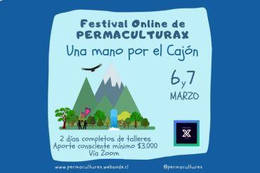 """""""Una mano por el Cajón"""": Festival Online en ayuda al Cajón del Maipo"""
