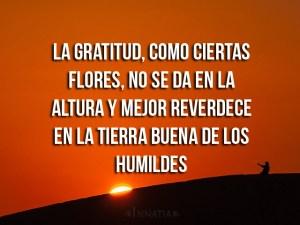 agradecimiento4-0