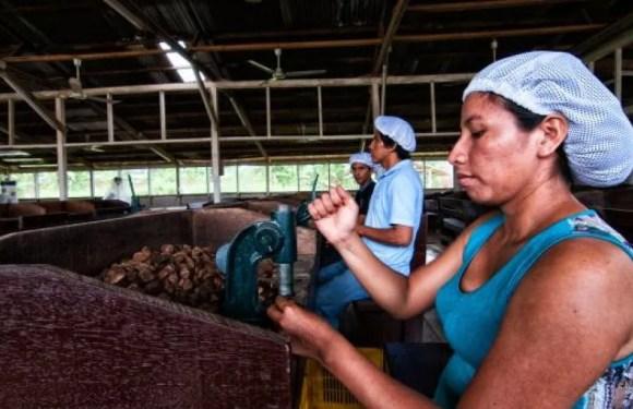 La OCDE urge a impulsar la participación laboral de la mujer en América Latina