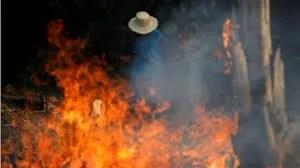 Bolsonaro responde a críticas sobre el Amazonas: incendios los provocan ONG para hacerlo quedar mal