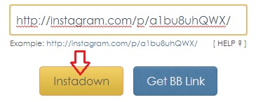 InstaDown descarga videos de instagram