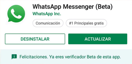 Actualizar WhatsApp Beta