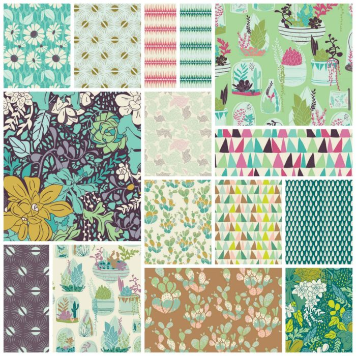 Succulence Collage