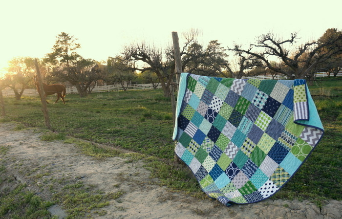 Horse and quilt 2