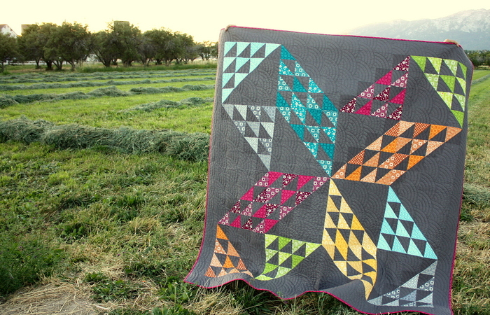 Brand new quilt pattern: Sugarhouse Star by popular Utah quilting blog, Diary of a quilter: image of a star quilt being help up outside by someone.