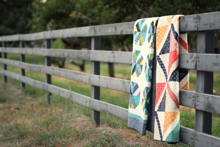 Amy Smart Diary of a Quilter