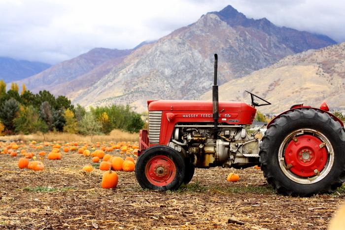 tractor-copy