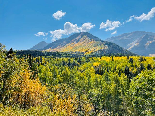 Fall Scenery: Alpine Loop Drive, Utah