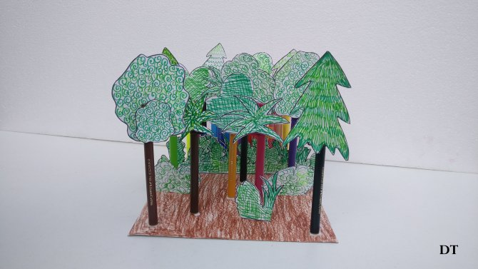 forest model
