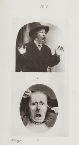 Surprise and distress in Darwin's Expression of Emotions. Plate