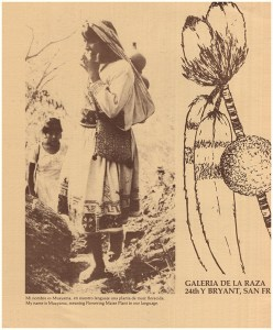 Cover. Galeria dela Raza. El Arte de los Huicholes: The Peter Young Collection (30487)