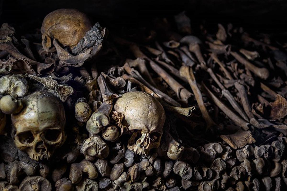 """Résultat de recherche d'images pour """"Les mystères des catacombes de Paris"""""""