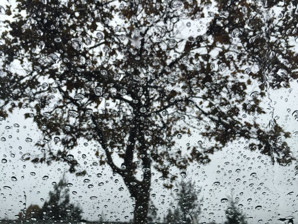 Rain drops in my car window during recent rain at Bay area, California