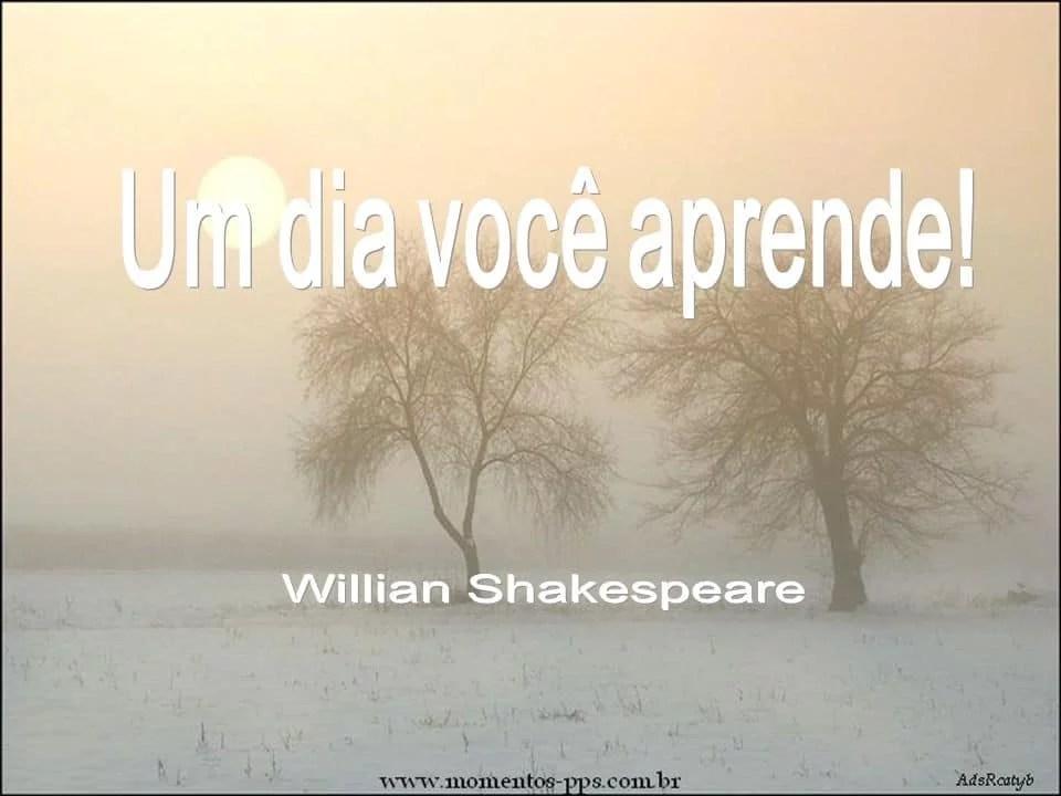 UM DIA VOCÊ APRENDE A DIFERENÇA… WILLIAN SHAKESPEARE