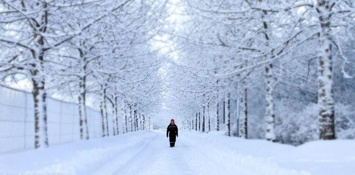 3 maiores mitos da neve que irão surpreendê-lo