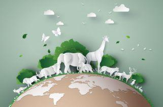 Quantos Animais Existem No Mundo?