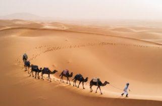 Por que os desertos são quentes e como eles são formados?