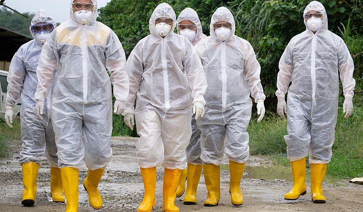 """A definição de pandemia da Organização Mundial da Saúde é """"a disseminação mundial de uma nova doença"""". A nova doença é infecciosa e contagiosa."""