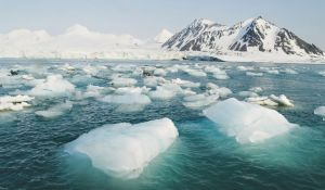 Por Que O Gelo Flutua?