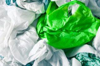 As bactérias podem degradar o plástico?
