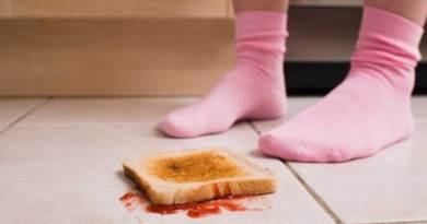alimento que caiu no chão