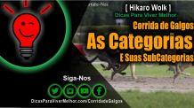 Corridas de Galgos: As Categorias e subCategorias   Oficial Hikaro Wolk