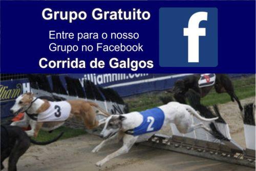 corridas de galgos grupo fechado do facebook sobre apostas das corridas de galgos