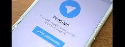 telegram SALA VIP TIPS - Corrida de galgos com Hikaro Wolk 02
