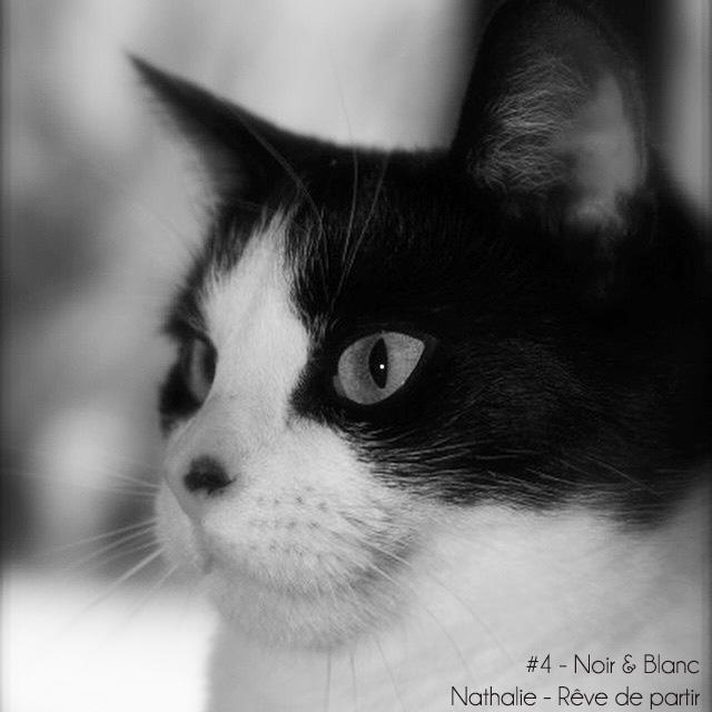 #4noiretblanc_nathrphoto