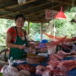 Keeping the Flies Off, Chiang Rai