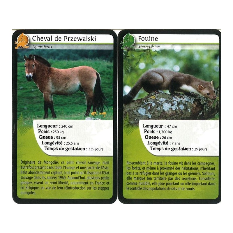 Dfis Nature Europe Jeu De Cartes Bioviva