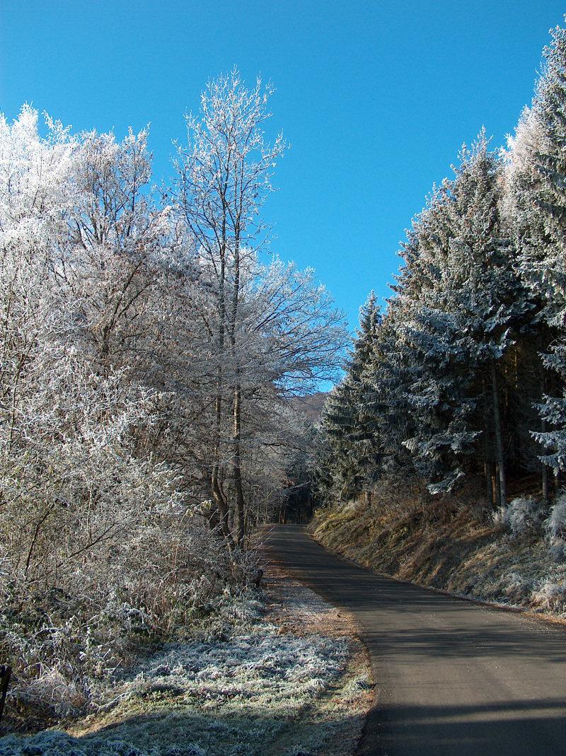 Travelling France Vosges