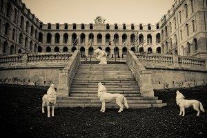 25 / 29 Hôtel intercontinental, ancien Hopital Hôtel-Dieu, sculptures Wild Bear & Wolfs de Richard Orlinski