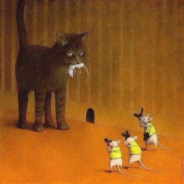 A metaphoric #caturday