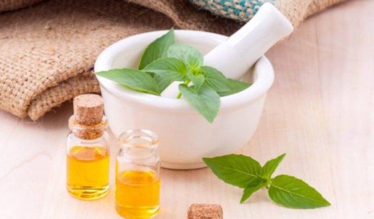 Ätherisches Melissenöl reduziert Alzheimer-Symptome und senkt den Blutdruck