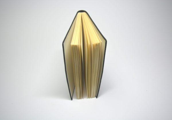 Buch innen