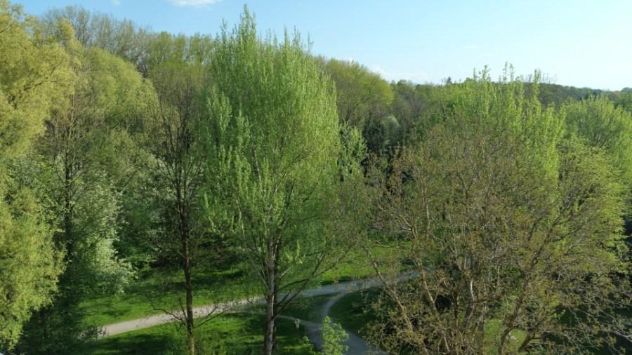 Blick von der Loggia ins Grüne