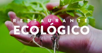 10 reglas de oro para ser un restaurante ecológico