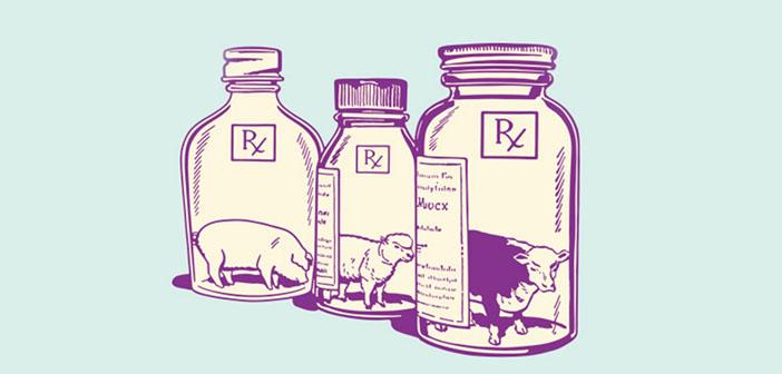 ilustración carne