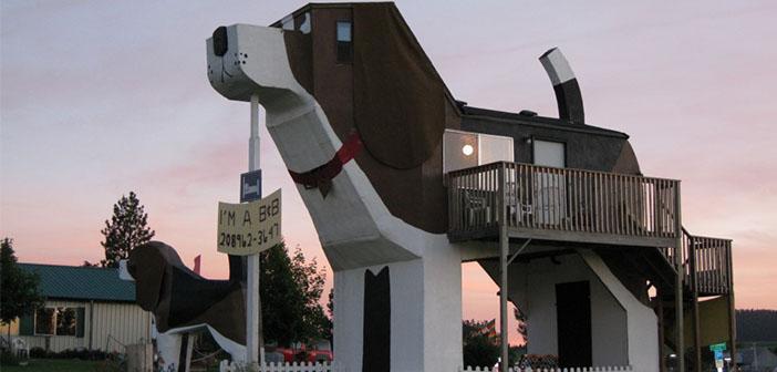 Le parc Dog Bark en forme de chien de l'hôtel Inn