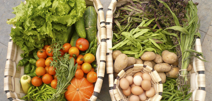 Restaurants and organic food