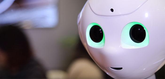 Il est appelé Pepper et a été développé par SoftBank Robotics Corp. Il a été présenté dans la 2016 au CES (Consumer Electronics Show) à Las Vegas avec un prix de départ de 1.700$.