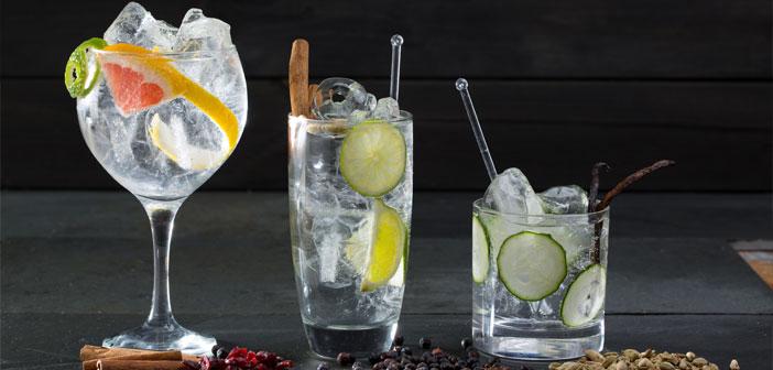 Le deuxième samedi de Juin est la Journée mondiale de Genève, un verre, avec le gin boom et tonique, Il a repris essor depuis quelques années, et elle a consolidé la présence sur le marché d'innombrables styles de gins.