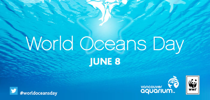 Pour terminer, notre action sociale proposée. Journée mondiale des océans est célébrée 8 Juin depuis l'Assemblée générale des Nations Unies reconnaîtrait 2009 l'importance des océans pour la santé de la planète.