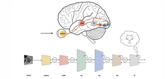 La tecnología clave de la IA es el Machine Learning (aprendizaje automático), cuando un sistema de computadora se alimenta con grandes cantidades de datos, que luego utiliza para aprender cómo llevar a cabo una tarea específica, como entender el habla o subtitular una fotografía.