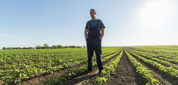 restauration de l'agriculture soutenue, une solution à l'exploitation des producteurs de denrées alimentaires