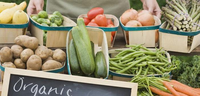 restaurants de plus en plus se tournent vers les producteurs locaux pour leurs matières premières et les aliments locaux et biologiques de plus en plus sont à trouver leur niche dans l'industrie hôtelière. Ici, nous vous dire comment vous pouvez aider votre entreprise à adopter ce nouveau concept.