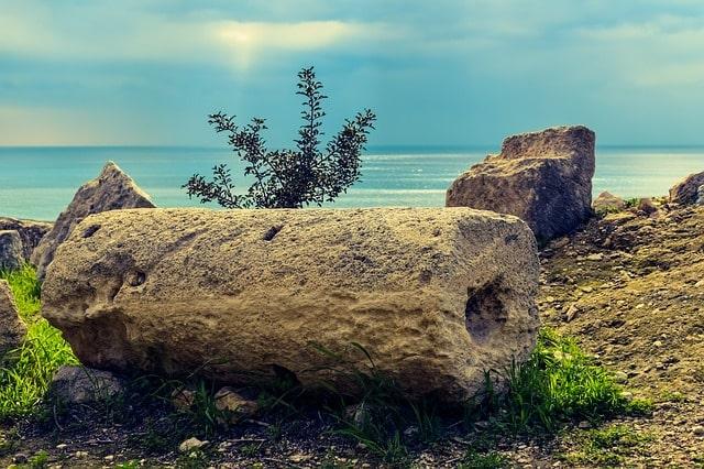 Pompei'deki harabede tören arabası bulundu